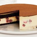 semifreddo-cioccolato
